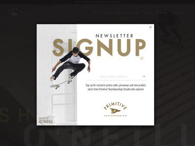 Dailyui #001 Signup skateboarding oneill shane primitive newsletter up sign design web ux dailyui