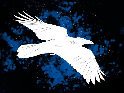 For a Book Cover black blue raven book cover design illustration