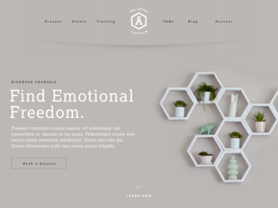 Anima Institute - Landing counseling therapy shelves hexagon homepage website ui ux