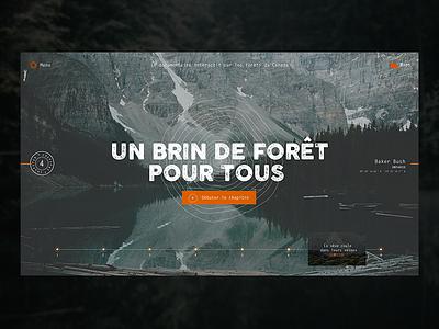 Toucher du Bois - Chapiter 4  documentary ux ui identity design