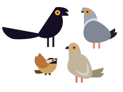 Birds in my yard chickadee dove pigeon grackle birds illustration vector