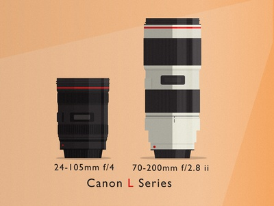 The Pair canon 24-105mm 70-200mm lenses camera flat style adobe illustrator dslr lens nikon