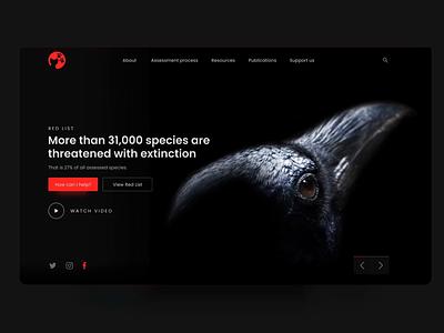 Website - Redlist Concept interaction black interface animals ux colors web animation design ui