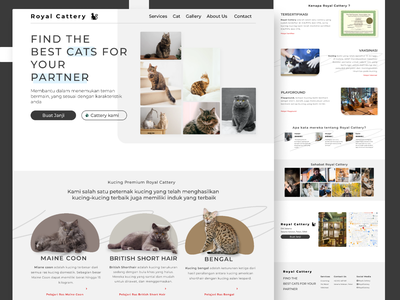 Royal Cattery userinterface uidesign web design app kucingweb kucingwebsite catterykucing websitecattery websitekucing kucing catcattery cat webdesign website design website landing page indonesia ux ui design