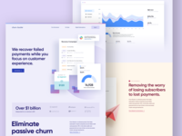 Churn Buster Site Is Now Live graphs illustrations marketing site website design uiux ui payment app ecommerce webdesign website