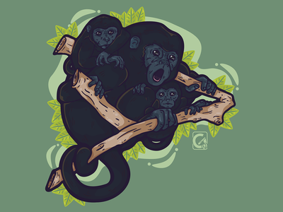 Salve-Monos - Colaboration with Change.ORG animals vector illustration art