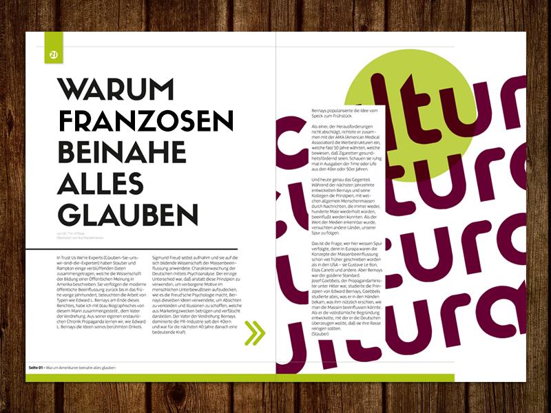 Magazine Design I magazine layout design brochure label text