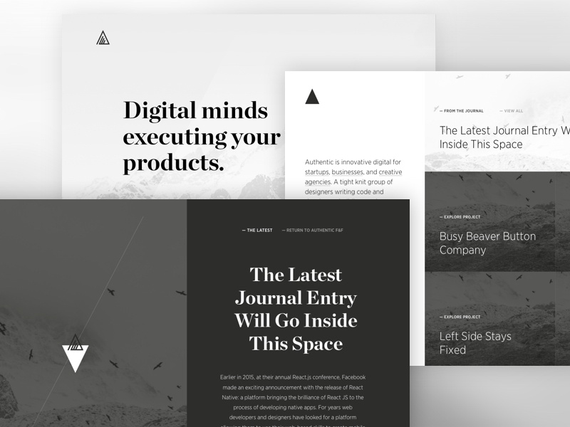 Authentic Wireframes wires wireframes lines type mountain nature icons clean white black denver chicago