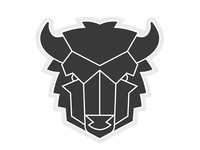 Buffalo 02