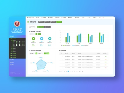 A dashboard page design