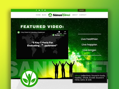 Sanus Network Web Design wordpress custom category pages custom post types