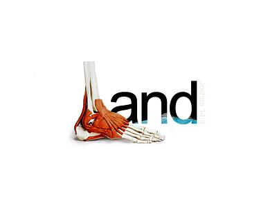 The Promised Land - Joshua 14:9 word as image honey milk history walk anatomy bones bone typography lettering feet foot land earth river jordan promised land old testament bible joshua