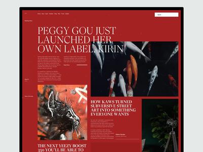 Magazine / Blog / News Site Landing Page Explorations