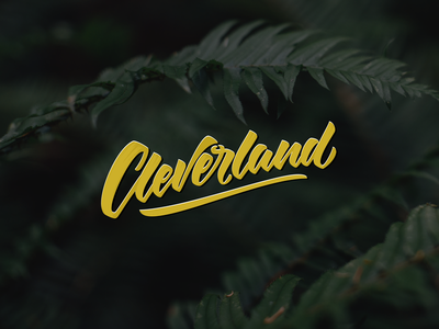 Cleverland typography type brush lettering