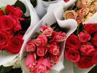flower delivery melbourne fl