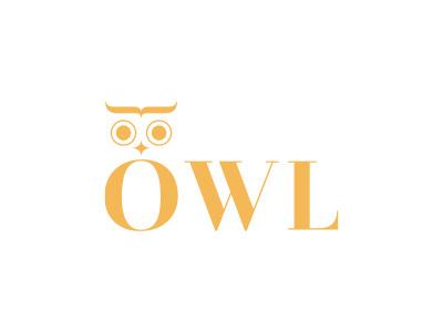 Owl morecolor minimalism typography fashion beuty elegant animal bird owl