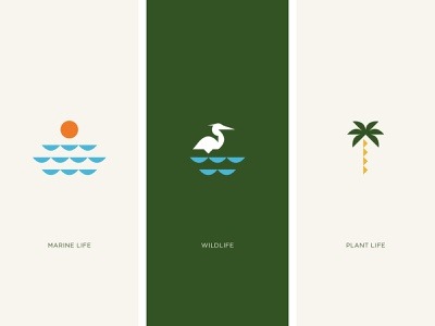 Coastal Life design brand development identity branding vector illustration icons branding identity