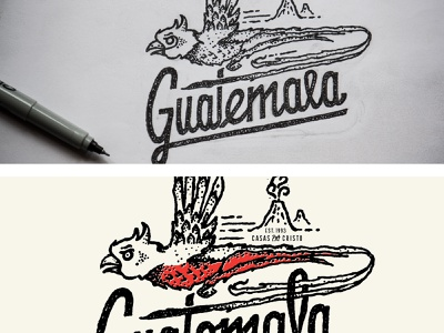 Blast from the Past drawing sketch ink bird quetzal volcano guatemala apparel design hand lettering design texture illustration lettering type typography