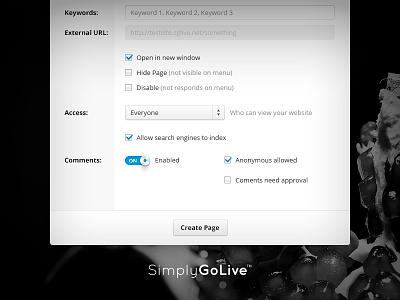 Admin Panel — New Page Window settings manage interface ui panel admin switch blue check checkbox input select