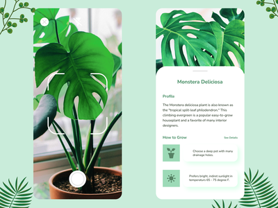 Plant App - Identify By Snap plantmobile plantmobileappdesign plantuidesign plantui plant plant app uidesign uiuxdesign ui  ux ui mobile ui mobile app design mobile app application app design app
