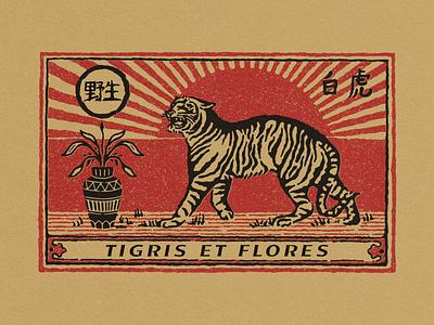 Tigris et Flores matchbox matches illustration vintage vector typography logo hand drawn branding design badge logo