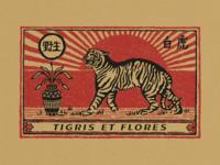 Tigris et Flores
