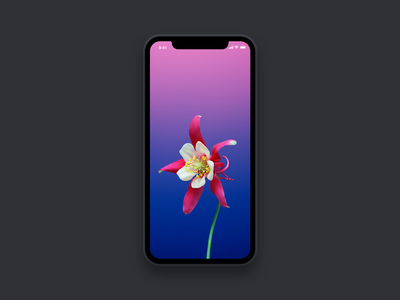 Simple iPhone X Mockup sketch dark simple minimal iphonex mockup x iphone