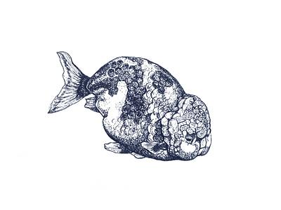 Plump fish illustration sketch ink illustraion drawing art
