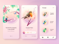 Birds Guide APP bird branding vector icon clean gradient ui design illustration minimal