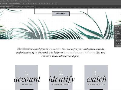 Web Design Shot website web design