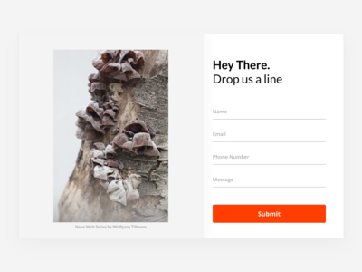 Daily UI Challenge Day 28: Contact Us