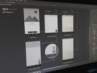 SelfSurvey - Wire Frames 1.0