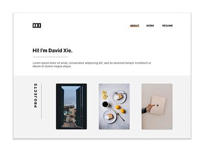 DX Porfolio Concept website web branding ux ui design