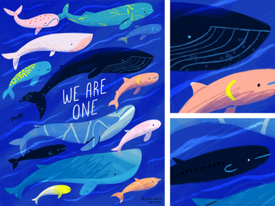 We Are One Poster flat design hand-drawn water painting artwork whale whales drawing ocean texture vector icon illustration