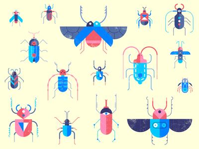 Bug Bounty Program clean geometric insect bold vector illustration flat program bounty bug