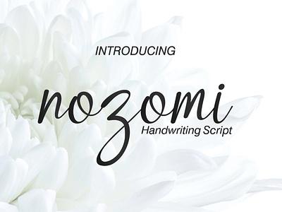 Nozomi Font handwriting handlettering typography logo illustrator illustration font design font design branding
