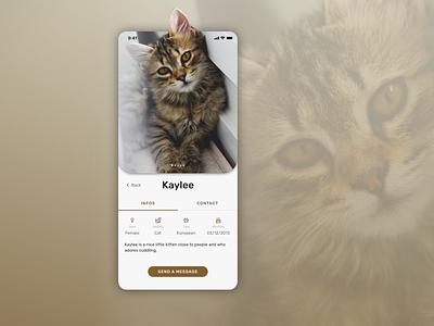 Daily UI :: 006 User profil mobile design mobile app ui design challenge ui design design