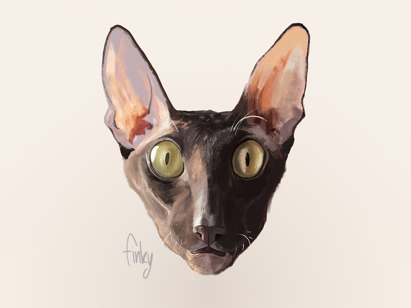 Simon the cat sweet kitten digital portrait digital painting cornish inspiration color simon cat