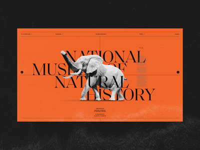 Online Museums fashion design typographic red future interaction minimal animation typography ui web museums museum online