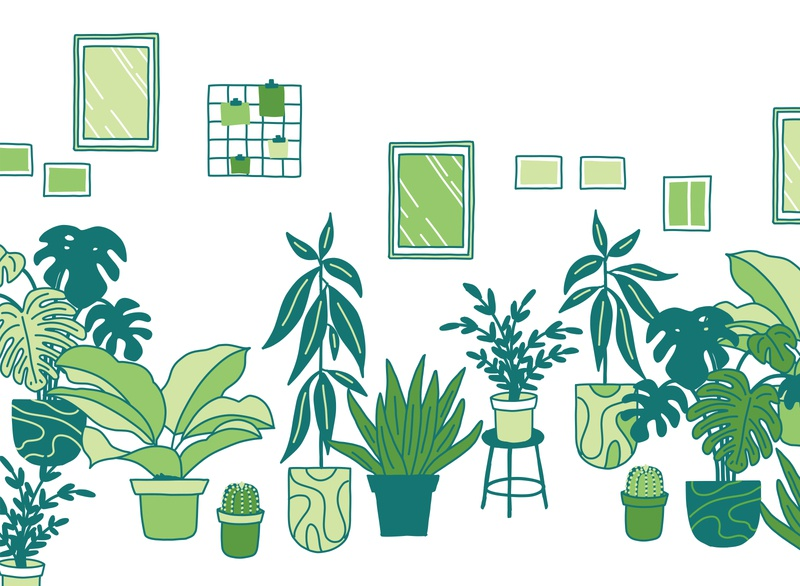 Houseplants wall pictures monstera cactus flat color 2d vector interior relaxing fern succulent leaf illustration plants