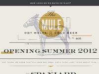 Mule Splash Page