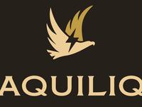 Aquiliq Fashion Logo Design