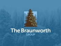 The Braunworth Group