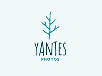 Yantes tree 01