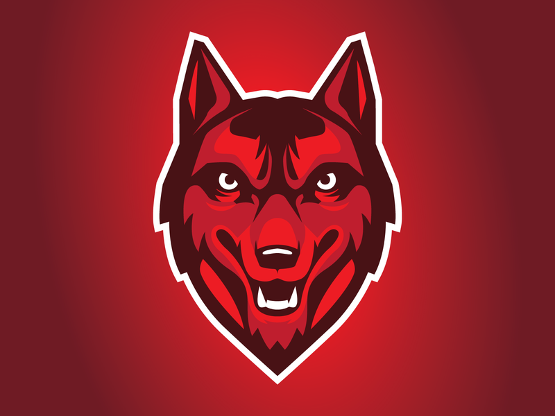 Red Wolf vector red dog wolf sports logo branding esports sports brand design illustration logo