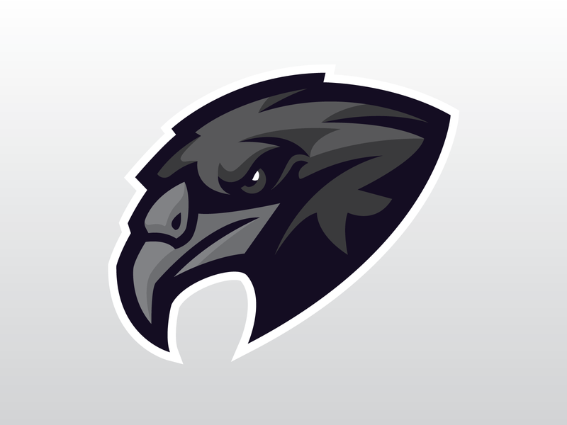 Raven branding rugby mascot soccer basketball baseball vector hockey sports logo sports brand design illustration logo