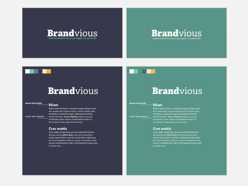 Brandvious Color & Type Pairing styleguide graphic design fonts design typography logo