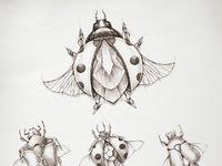 Ladybird sketches