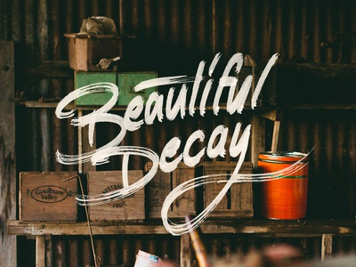 Beautiful Decay type typography lettering brush copic marker chisel hand drawn