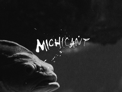 Michicant cola pen film photography photo script messy ink pen lettering typography bon iver fish
